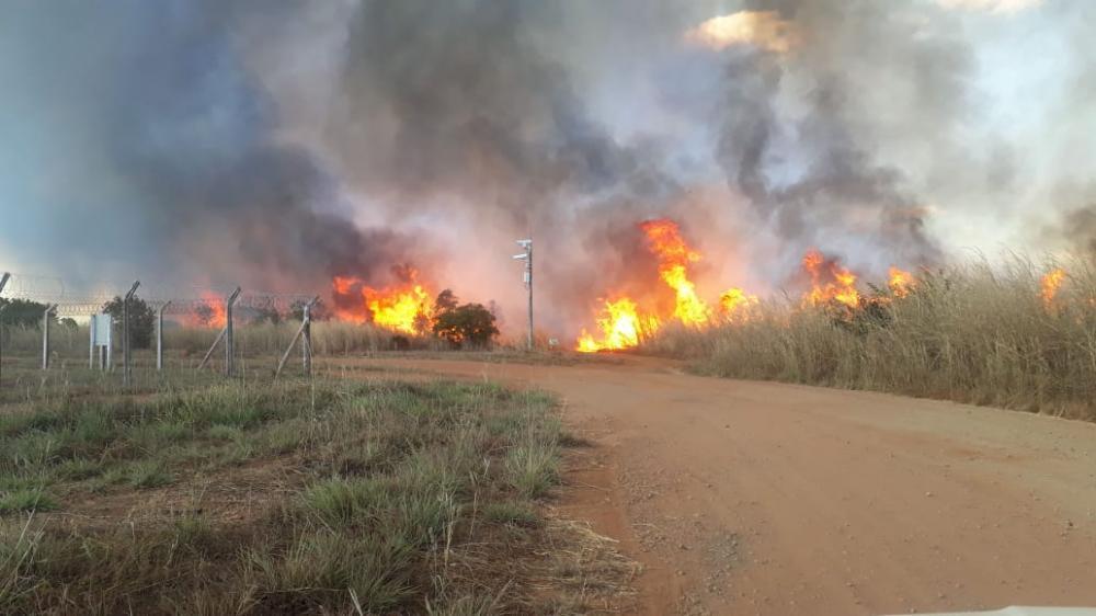 Fogo destruiu área de grandes proporções em Palmas, no último domingo (Foto: Divulgação)