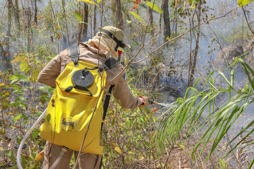 Bombeiro militar usa bomba costal no combate às chamas em Taquaruçu (Foto: Luiz Henrique Machado)