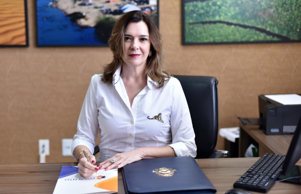 Presidente da Agência de Fomento, Denise Rocha, destaca a busca da estabilidade econômica durante a pandemia (Foto: Divulgação)