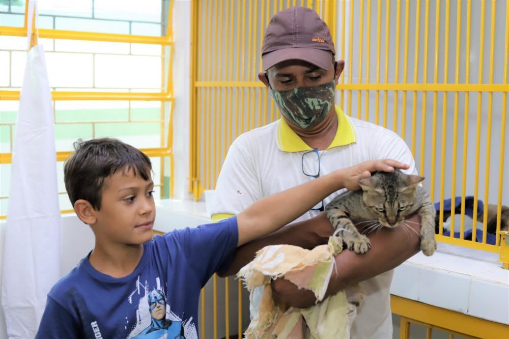 O serviço é oferecido àqueles proprietários de animais considerados de baixa renda, que estejam inscritos no Cadastro Único (CadÚnico) do Governo Federal (Foto: Marcos Sandes)